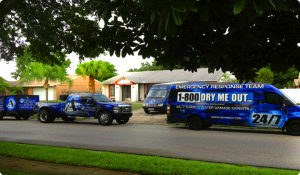 water damage cleanup Coleman fl